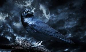 چرخه ی کشش و ترس - چرا انتظار المان اصلی بازی های ترسناک تلقی می شود؟