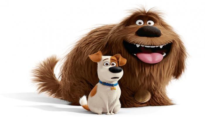 انیمیشن زندگی پنهان حیوانات خانگی